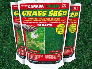 Canada Green 1
